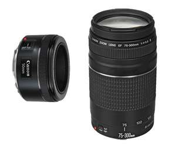 Bestbuy: Canon Lente EF 50mm f/1.8 STM + EF75 - 300mm f/4-5 - Negro a $3,349