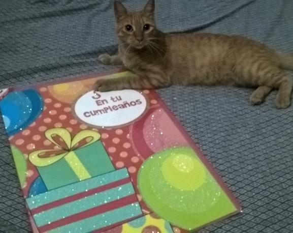 Chedraui Mina Villahermosa: Tarjeta de Cumpleaños Gigante