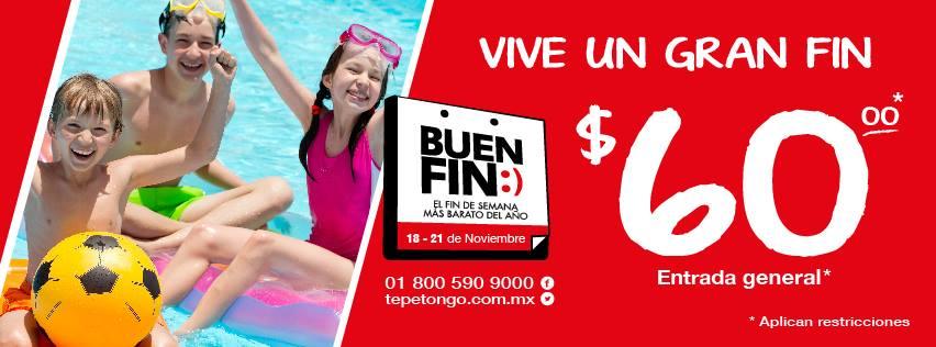 El Buen Fin en Tepetongo: boletos a $60 (regular $220)