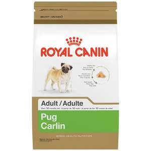 Amazon MX: Royal Canin Croquetas para Pug, 4.53 kg
